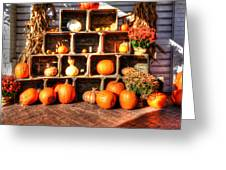 Thanksgiving Pumpkin Display No. 2 Greeting Card