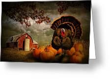 Thanksgiving Turkey Among Pumkins Greeting Card