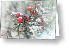 That First Snowfall Greeting Card