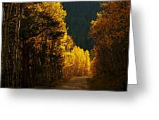 The Golden Road Greeting Card