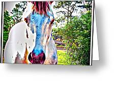 That Horses Face Greeting Card
