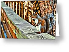 That Squirrel Greeting Card