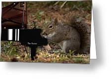 The Acorn's Pianist Greeting Card