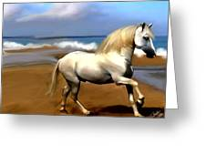 The Andalusian Greeting Card