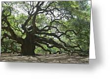 The Angel Oak Greeting Card