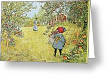 The Apple Harvest Greeting Card by Carl Larsson