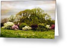 The Apple Orchard Greeting Card