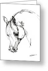 The Arabian Horse Sketch Greeting Card