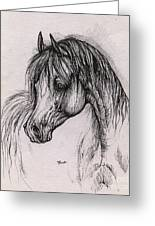 The Arabian Horse With Thick Mane Greeting Card