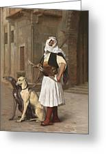 The Arnaut With Two Whippets Greeting Card
