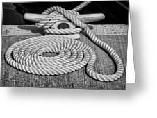 The Art Of Rope Lying Greeting Card