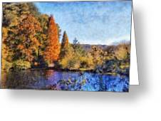 The Bald Cypress Greeting Card