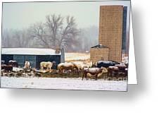 The Barn Yard Greeting Card