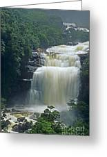 The Base Of Angel Falls In Canaima National Park Venezuela Greeting Card
