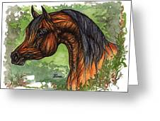 The Bay Arabian Horse 1 Greeting Card