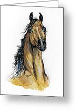 The Bay Arabian Horse 13 Greeting Card