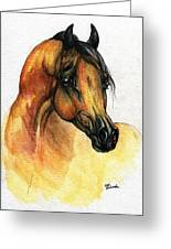 The Bay Arabian Horse 14 Greeting Card