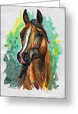The Bay Arabian Horse 2 Greeting Card