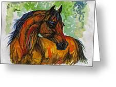 The Bay Arabian Horse 3 Greeting Card