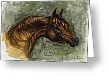 The Bay Arabian Horse Greeting Card