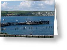The Bay At Swanage Greeting Card