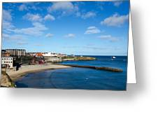 The Beach At Cullercoats Greeting Card