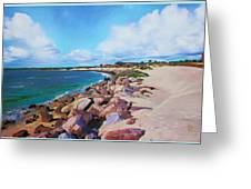The Beach At Ponce Inlet Greeting Card by Deborah Boyd