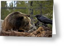The Bear And Crow Greeting Card