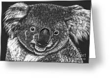 The Bear From Down Under Greeting Card