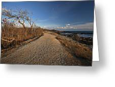 The Beaten Path Greeting Card