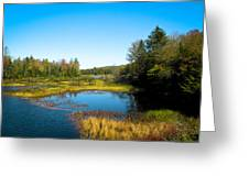 The Beautiful Moose River In Old Forge New York Greeting Card