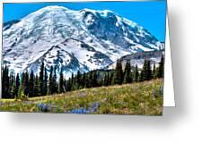 The Beautiful Mount Rainier At Sunrise Park Greeting Card