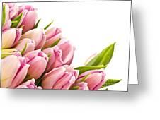 The Beautiful Purple Tulips Greeting Card by Boon Mee