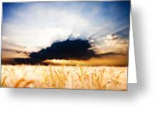 The Beautiful Sunset Greeting Card