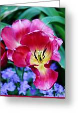 The Beauty Of Flowers Greeting Card