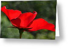 The Beauty Of Imperfection Greeting Card