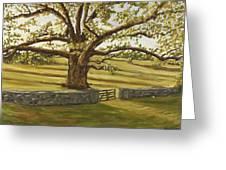 The Bedford Oak Summer Greeting Card