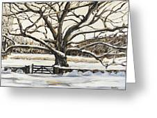 The Bedford Oak Winter Greeting Card