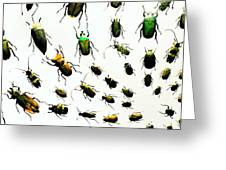 The Beetles Greeting Card