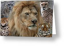 The Big Cats Greeting Card