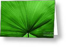 The Big Green Leaf Greeting Card