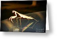 The Biggest Mantis I Ever Saw Greeting Card