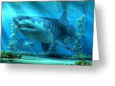 The Biggest Shark Greeting Card