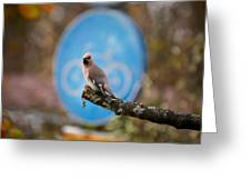 The Bird Without A Bike Greeting Card