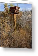 The Birdhouse Kingdom - Western Kingbird Greeting Card