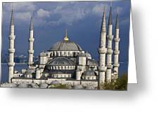 The Blue Mosque In Istanbul Greeting Card