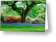 The Bluebell Wood Greeting Card