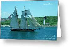 American Tall Ship Sails Past Mcnabs Island Greeting Card