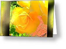 The Blushing Yellow Rose Greeting Card