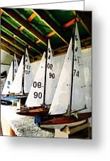 The Boat Shed Greeting Card